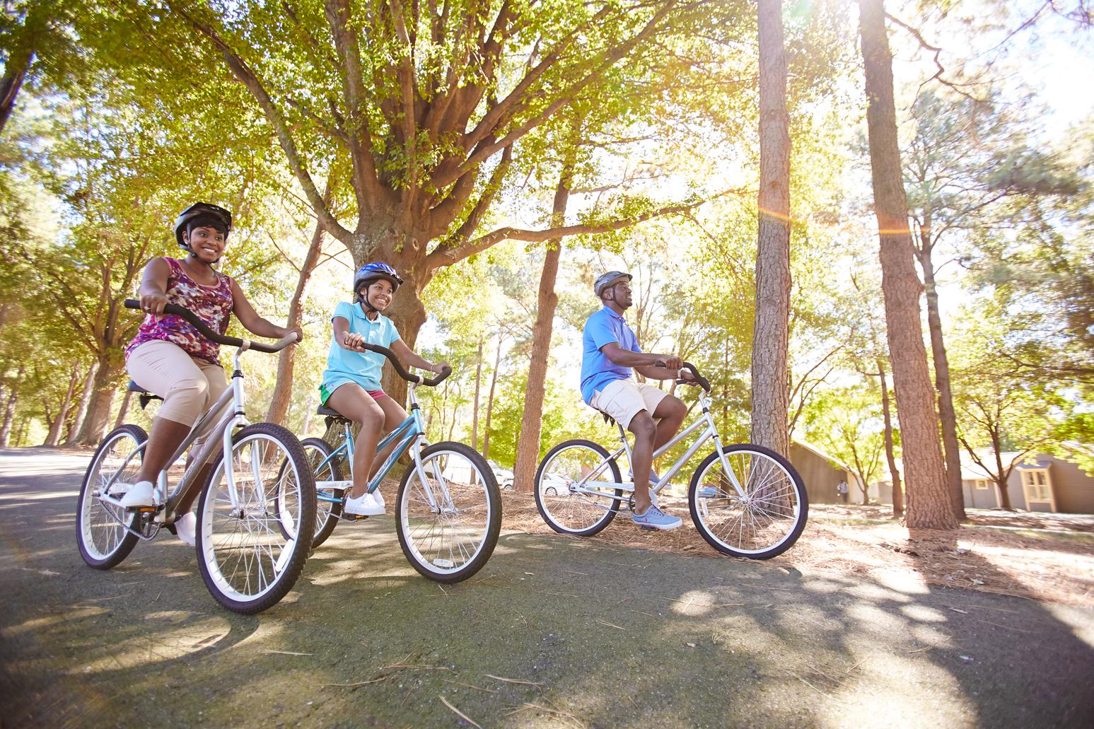 Bikes family recreation