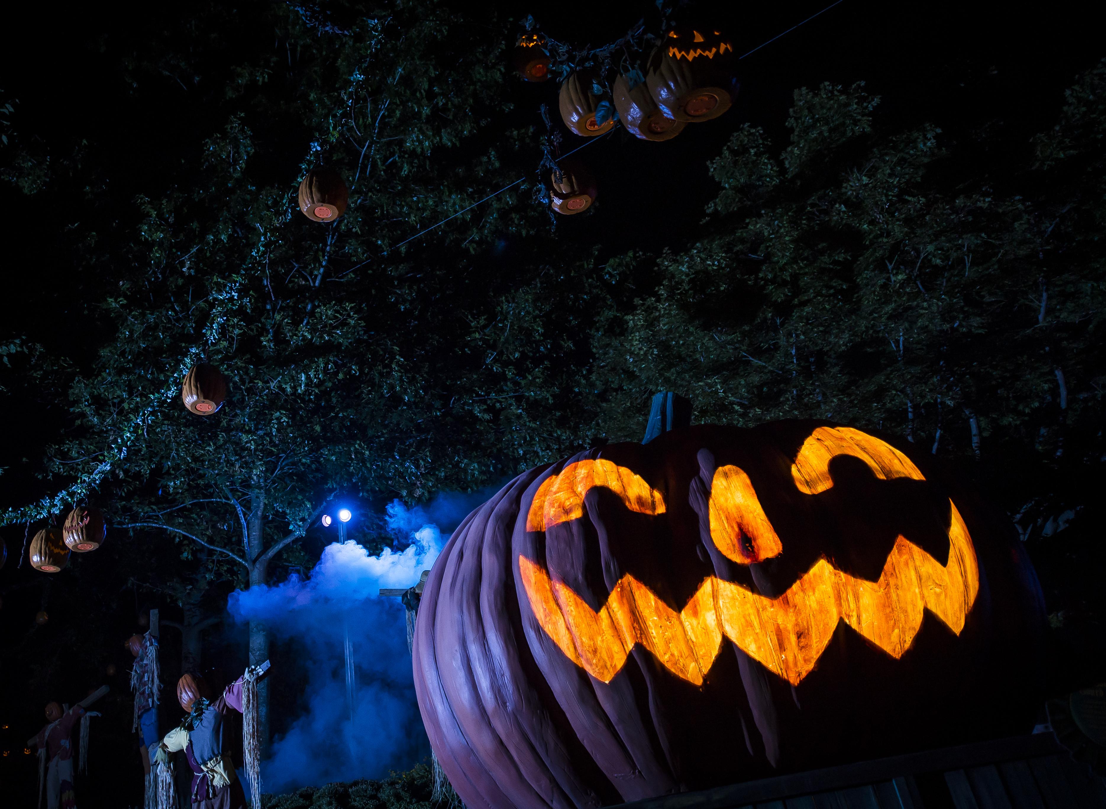 Howl-o-Scream Pumpkin Busch Gardens