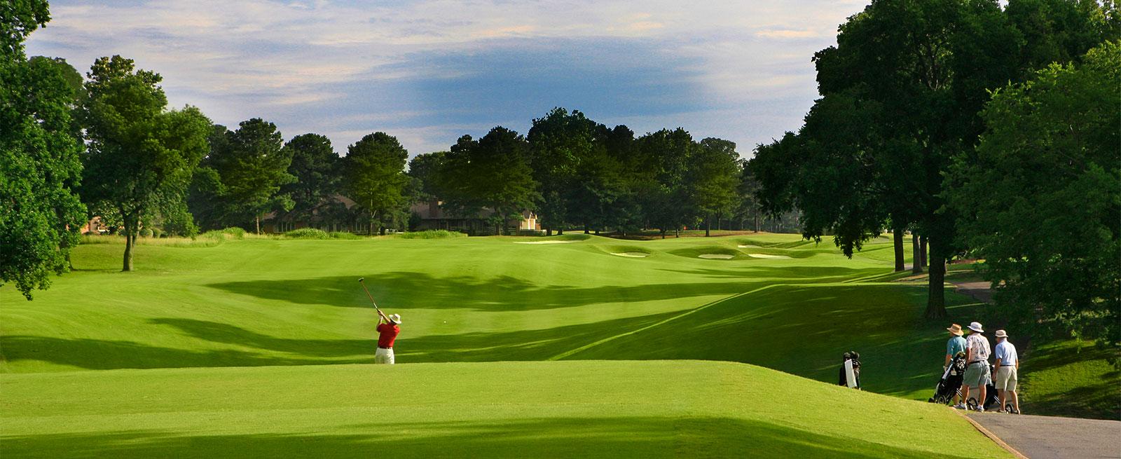 panoramic golf course shot