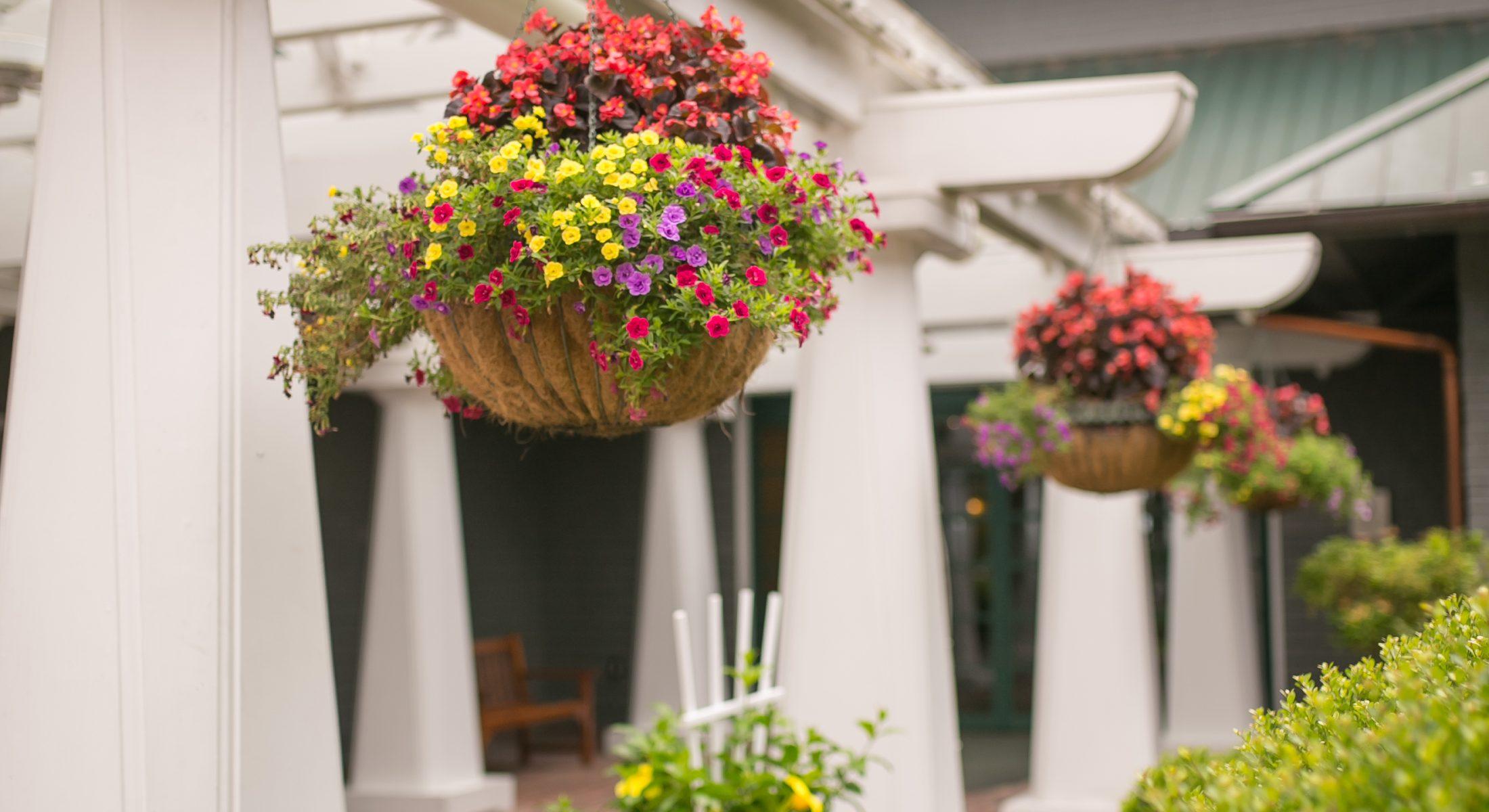 resort center entrance lobby flowers