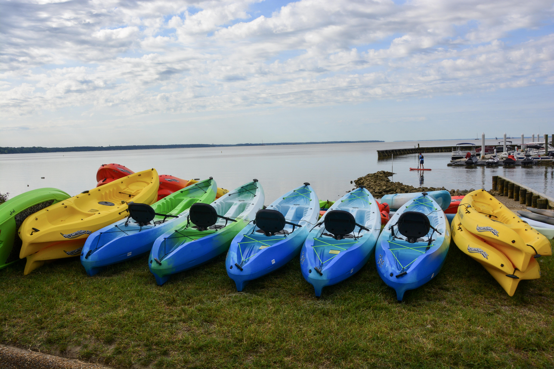 Marina kayaks