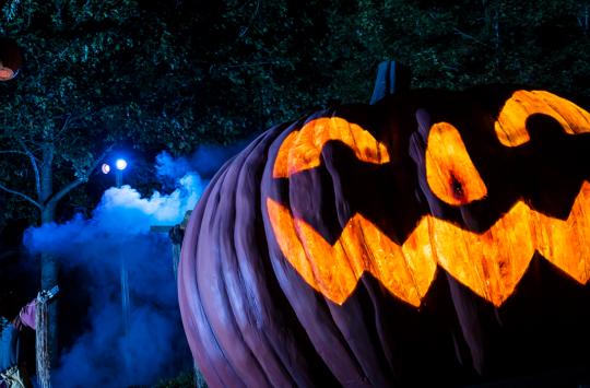 6 Fang-tastic Halloween Events in Williamsburg