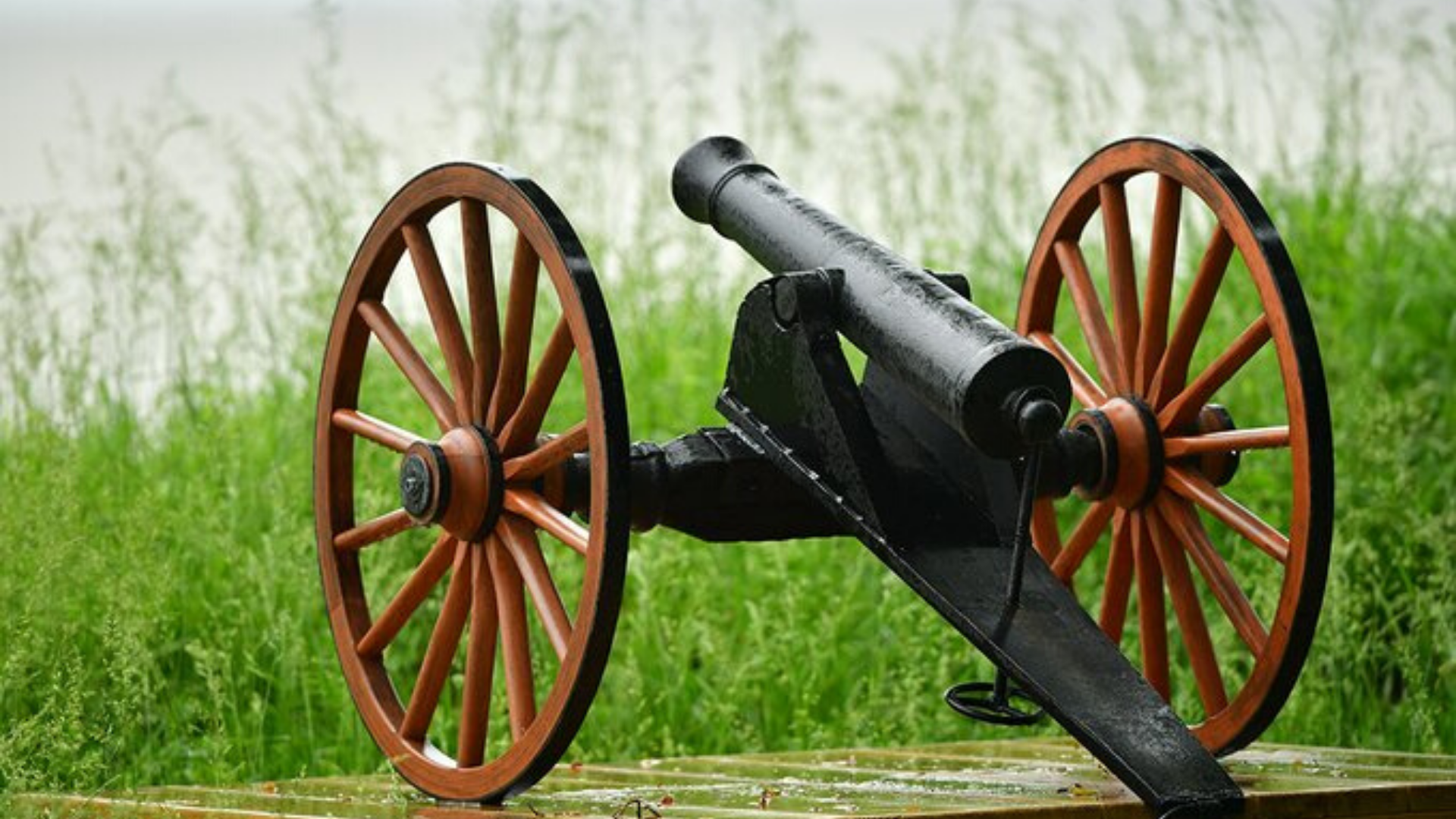 3 Reasons to Join The Cannon Club